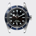 Case der Tudor Black Bay